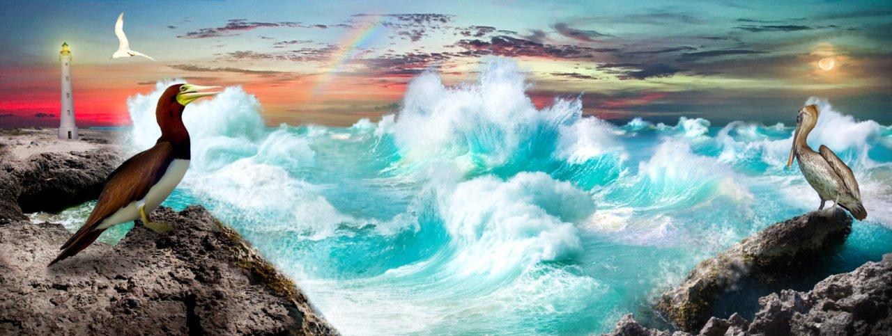 Aruba Fantasy door Laura Wagenaars